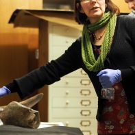 Senior Natural History Curator Dr Victoria Purewal in the geology store
