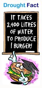 Drought Fact